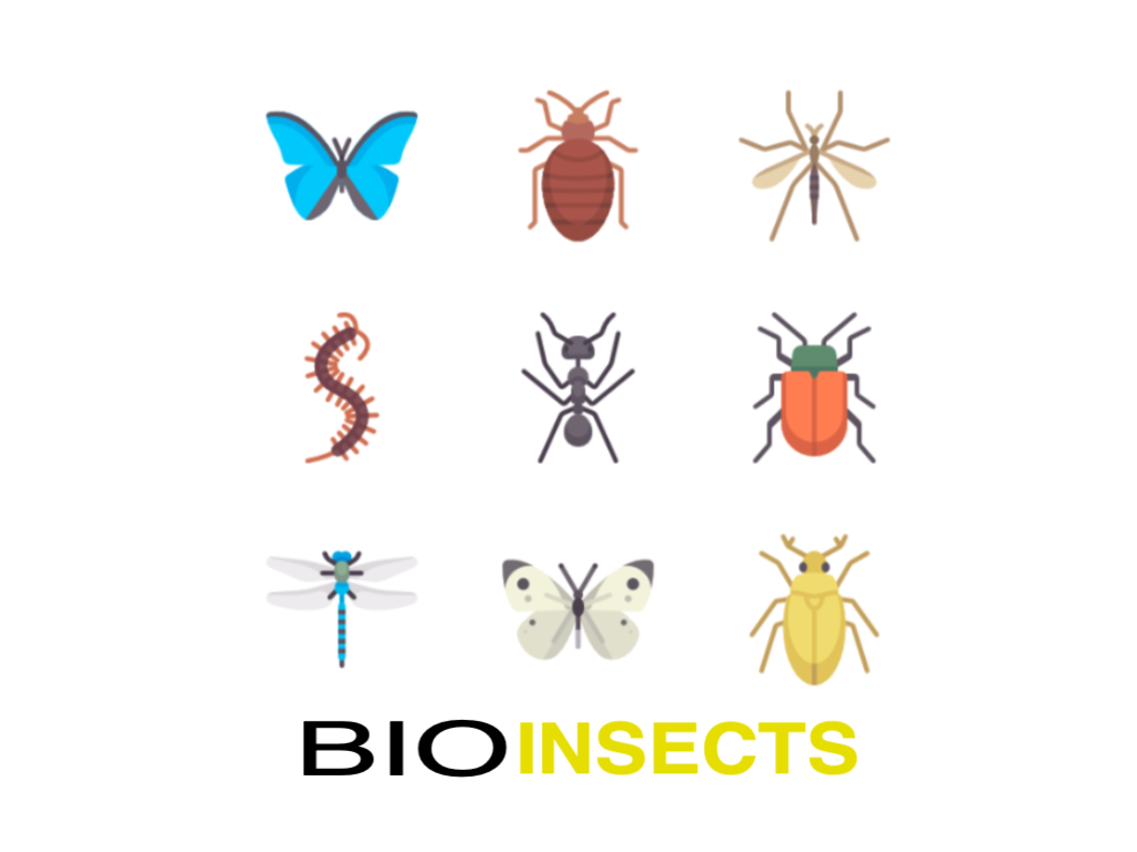 bioinsects